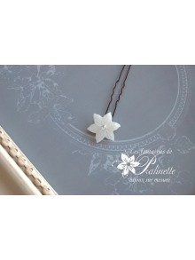 Pic fleur de nacre edelweiss Nayem